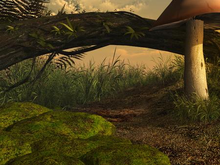 log on: Old log with grass and mushroom