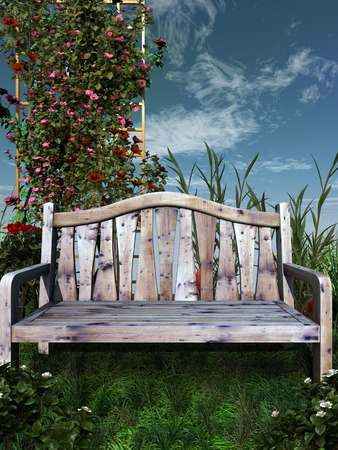 wooden bench: Wooden bench in a green garden