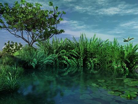 vegetation: Pond with spring vegetation