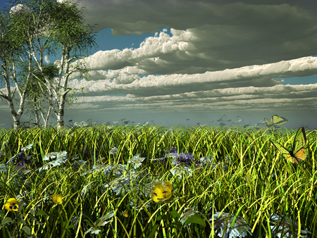 stormy clouds: Stormy clouds over a green meadow
