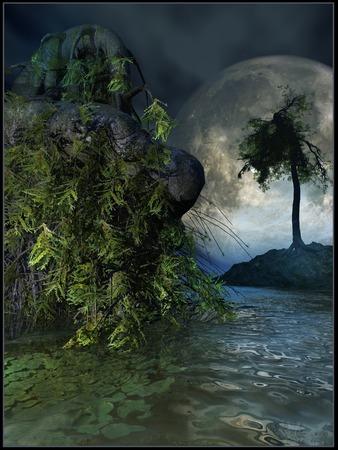 rain forest: Full moon in rain forest