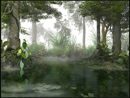 Misty Sumpf