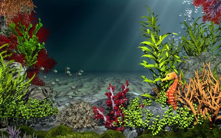 caballo de mar: paisaje bajo el agua con peces y caballitos de mar