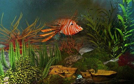 reef fish: Coral reef with colorful fish