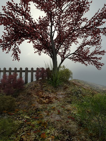 gloomy: Lonely tree on a gloomy autumn day