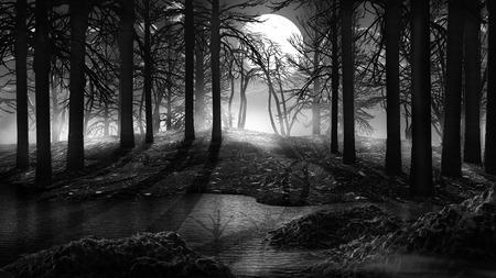 dark forest: Stream in a dark forest
