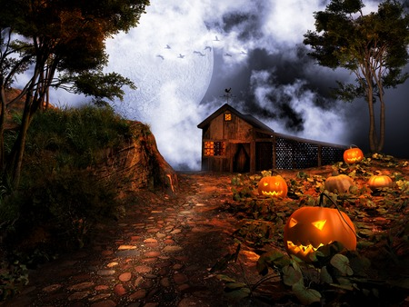 shed: Shed on the pumpkin hill