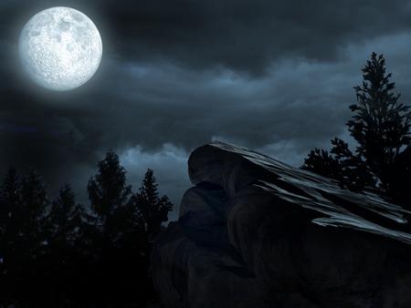 dark forest: Moon over the dark forest