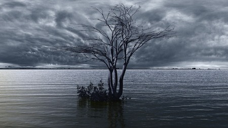 gloom: Tree on a middle of a lake