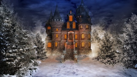 snow forest: Fairytale castle in the middle of snowy forest