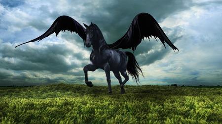 fantasy: Fantasy winged black horse Stock Photo