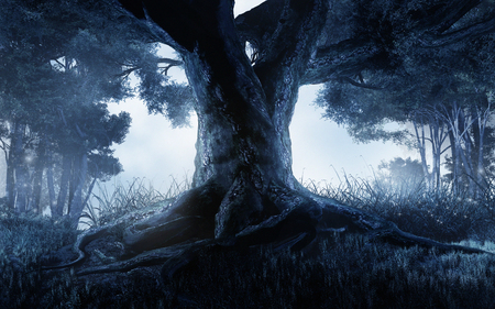 A big tree in the middle of a dark forest Foto de archivo