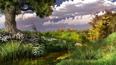 creek: Landscape with old oak and stream Stock Photo