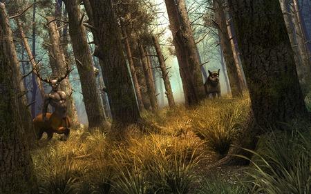 centaur: Wolf and centaur into old forest