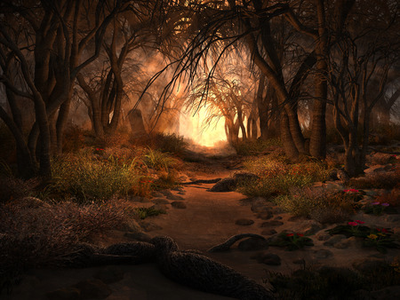 forest path: Autumn scenery with trees,forest path, roots and stones
