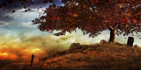 木と墓石のある秋の風景 写真素材