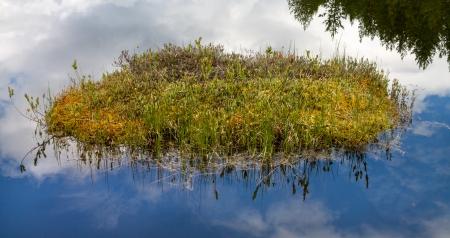turba: Turba flotando en un lago desierto