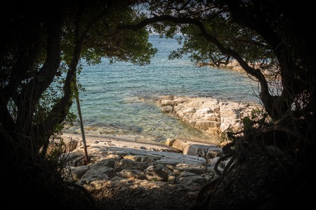 shady: Sea view behind shady trees in Greece
