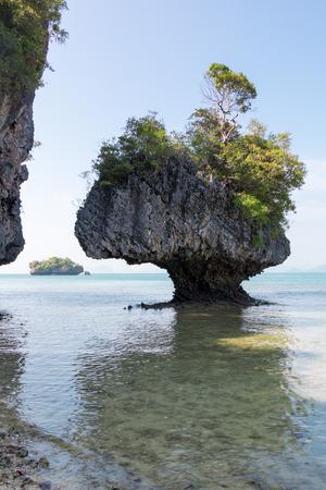 Portrait photo of strange forms of karst limestone shore rocks at Koh Phak Bia, Thailand