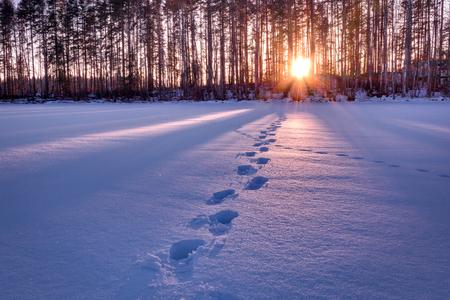 Voetafdrukken in sneeuw die leiden tot zonsondergang HDR schot