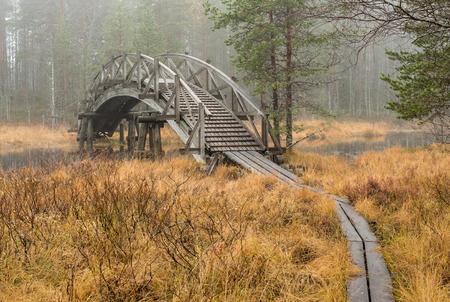 Wooden walking route bridge and duckboards