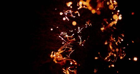The fire spreads through the smoldering steel wool, forming many sparks and isolated beautiful combustion on black background that looks like strands of neurons in the brain