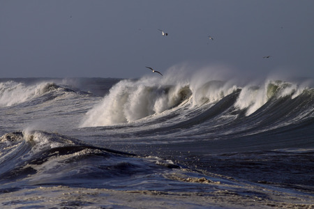 Big waves on the Portuguese coast in a sunny but stormy autumn morning photo