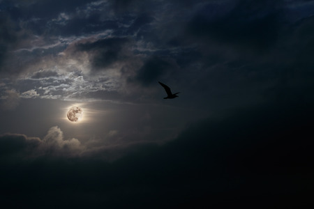 Interesting full moon rise at dusk Archivio Fotografico