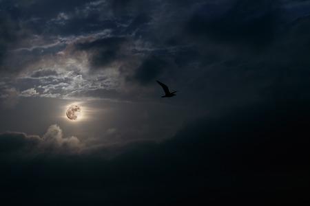 cloudy night sky: Interesting full moon rise at dusk Stock Photo