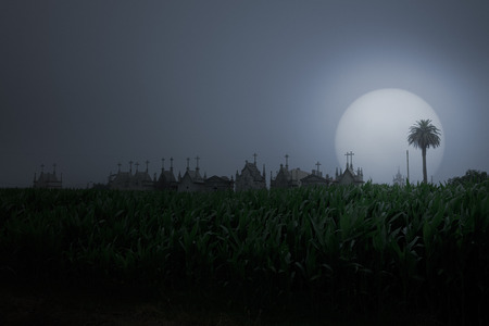 Rural misty landscape seeing corn field and cemetery skyline (added some digital noise) Stock Photo