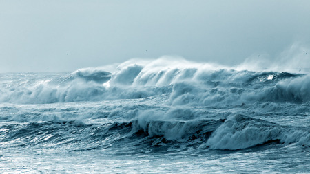 green  wave: Big waves approaching the Portuguese coast in a stormy and misty day Stock Photo