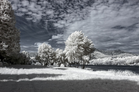 Lima river bank in a spring sunny afternoon. North of Portugal. Infrared toned blue. photo