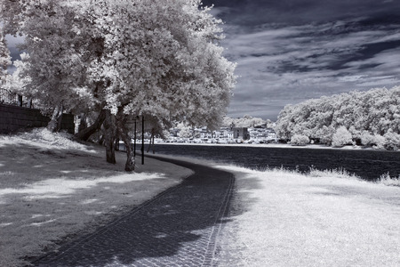 Lima river bank in a spring sunny afternoon seeing the medieval city of Ponte de Lima in the background. North of Portugal. Infrared toned blue.