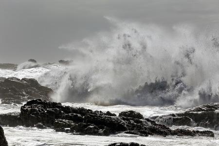 Winter sea storm at noon
