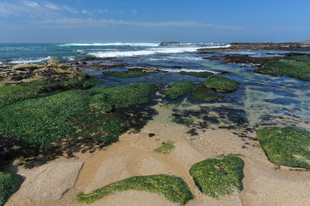 Beautiful empty rocky beach from the north of Portugal during low tide photo
