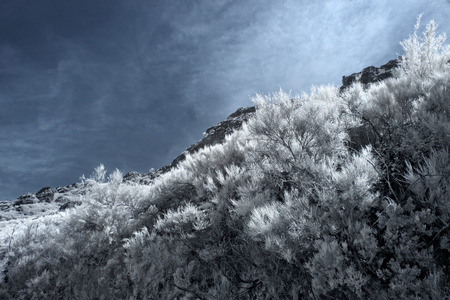 ir: Mountain peak from Peneda Geres National Park, north of Portugal. Used infrared filter.