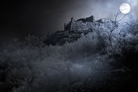 fog: Old european castle in a foggy full moon night Stock Photo
