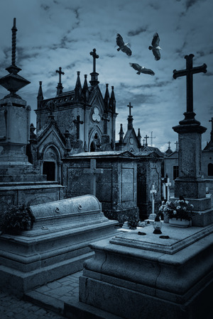 griffon: Spooky old european cemetery overflown by griffins. Used some digital filters. Stock Photo
