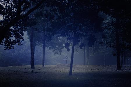 Spooky dark park with grave and granite crosses