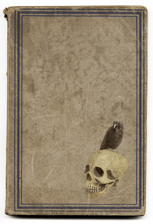 witchcraft: Very old brown witchcraft book with framed cover illustrated with a skull and a crow. Good for halloween.