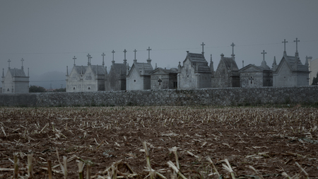 hallowmas: Conceptual sad image about death with corn stubble and old christian cemetery from an european remote village