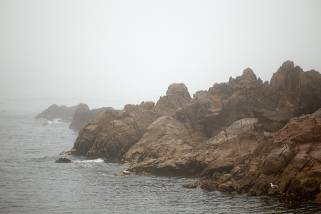 scarp: Rocky coast of northern Portugal in a summer foggy evening