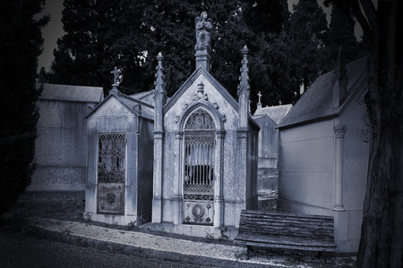 hallowmas: Alley of an old european cemetery