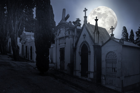 hallowmas: Old european cemetery in a full moon night