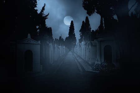 fog: Street of an old european cemetery in a full moon night