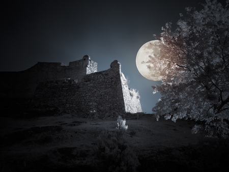 gothic architecture: Mysterious old european medieval castle in a full moon night