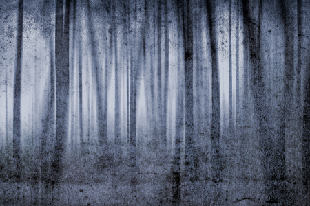 misty forest: Misty forest grunge background; my own artistic view
