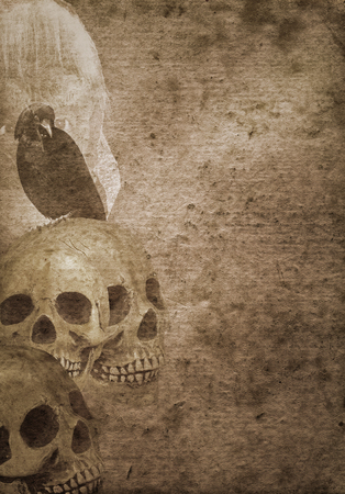 old paper background: Grunge scary halloween background with skulls, crow and witch Stock Photo
