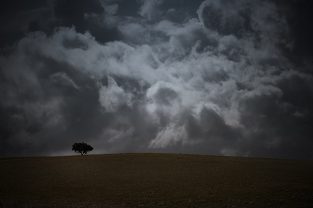 enhanced: Alentejo plain, south of Portugal, in a late winter day with dramatic cloudy sky before rain (enhanced sky)