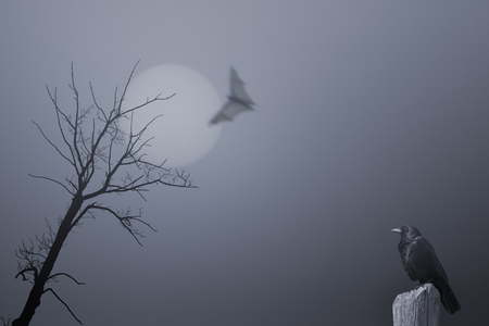 bird illustration: Spooky halloween background with dead tree, crow and bat